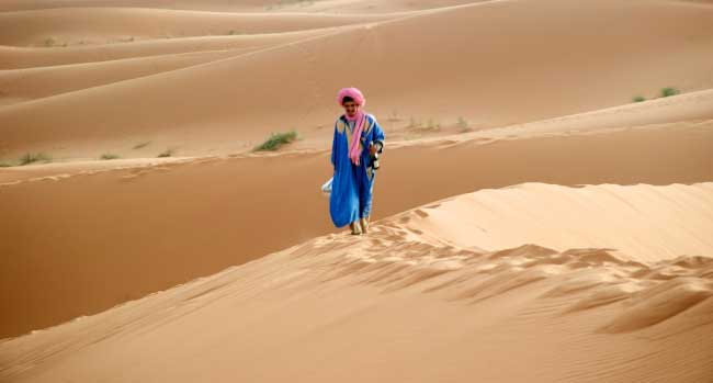 The Dunes of the Sahara