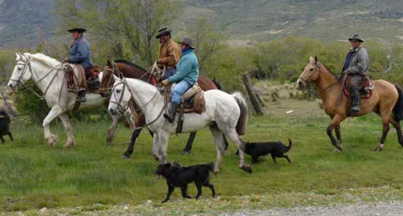 Gauchos with their dogs - Argentina
