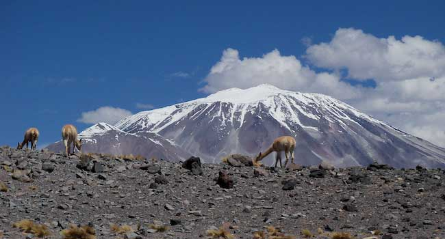 Guanocs and Volcano