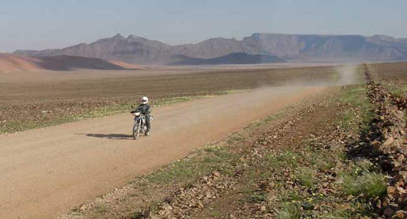 Namibian Desert Rider