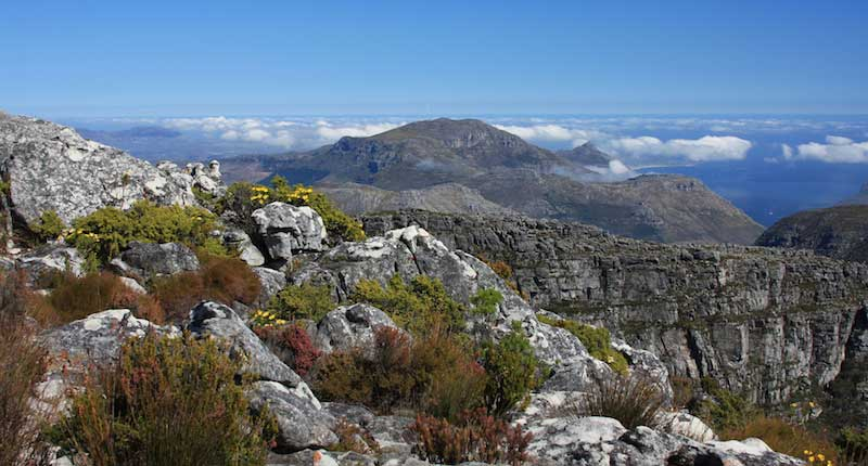 A View From Table Mountain - Cape Town, South Africa