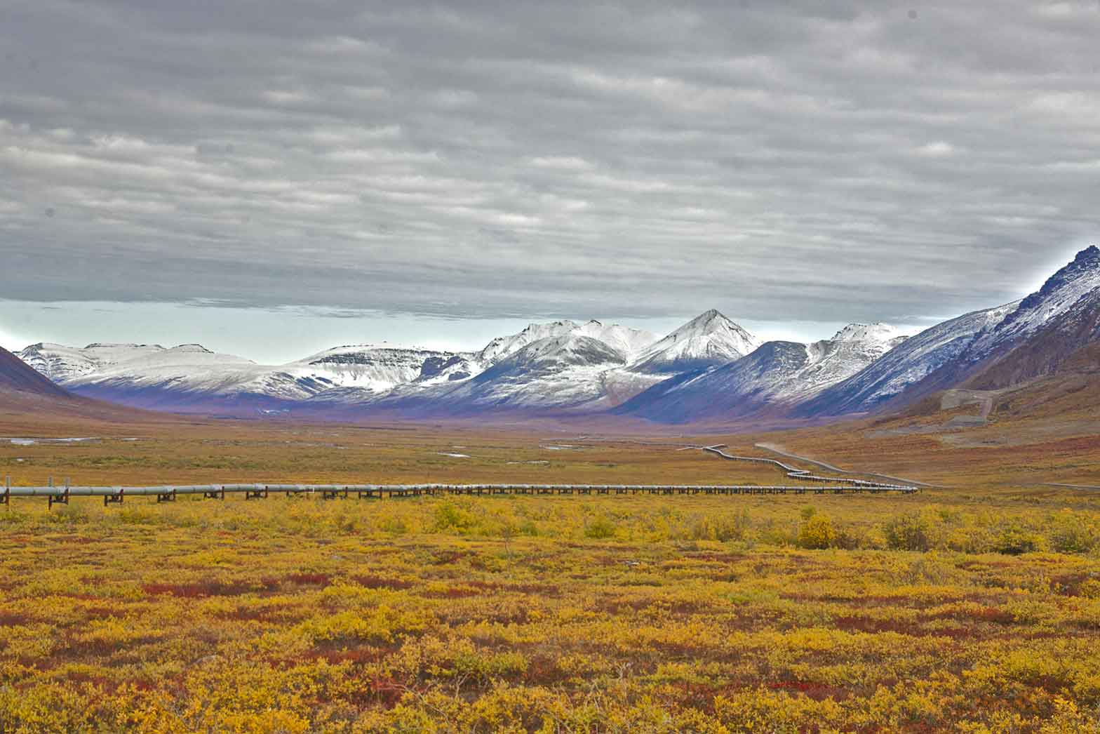 Alaska's landscape
