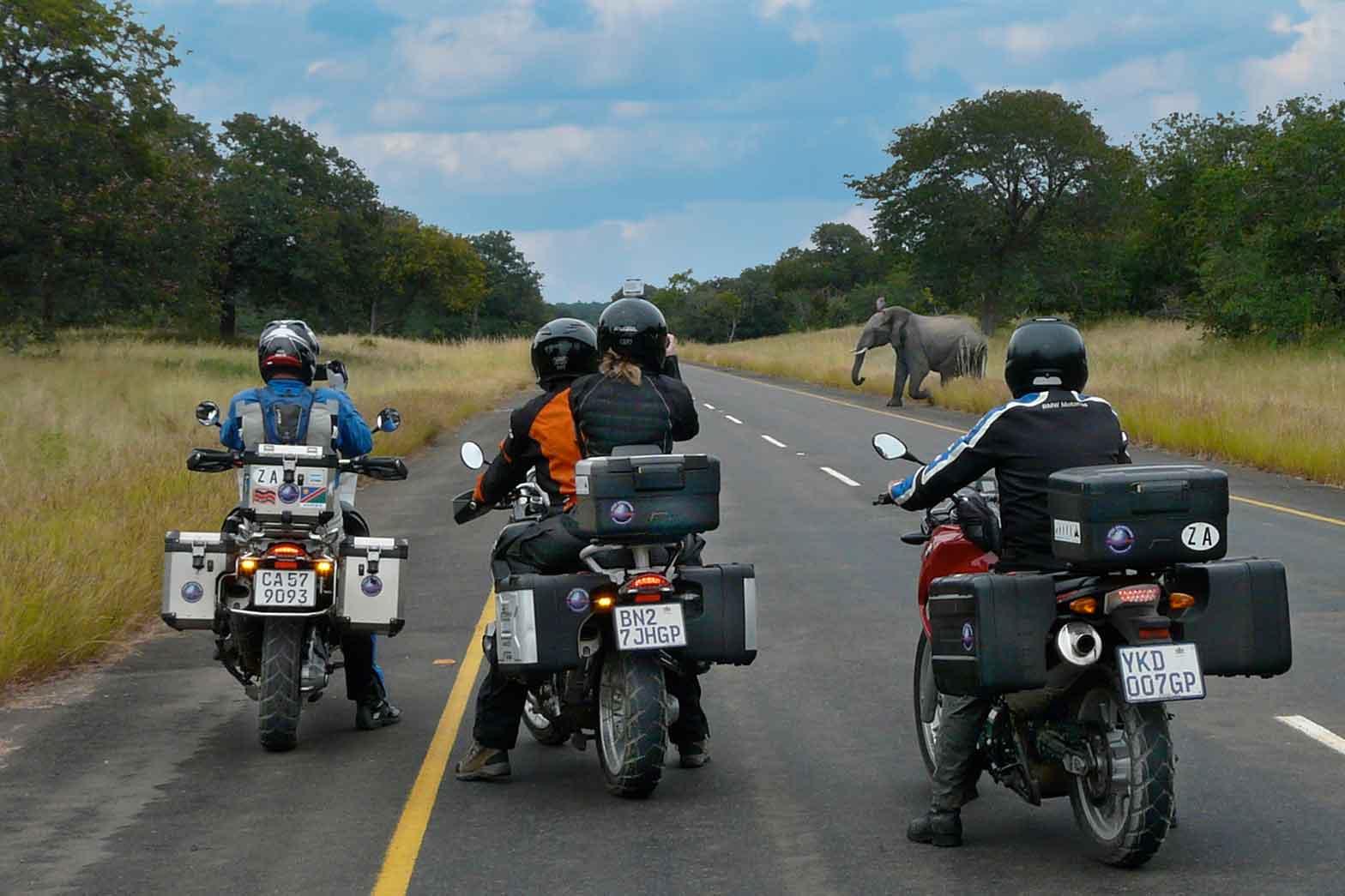 Ellies Crossing – Botswana