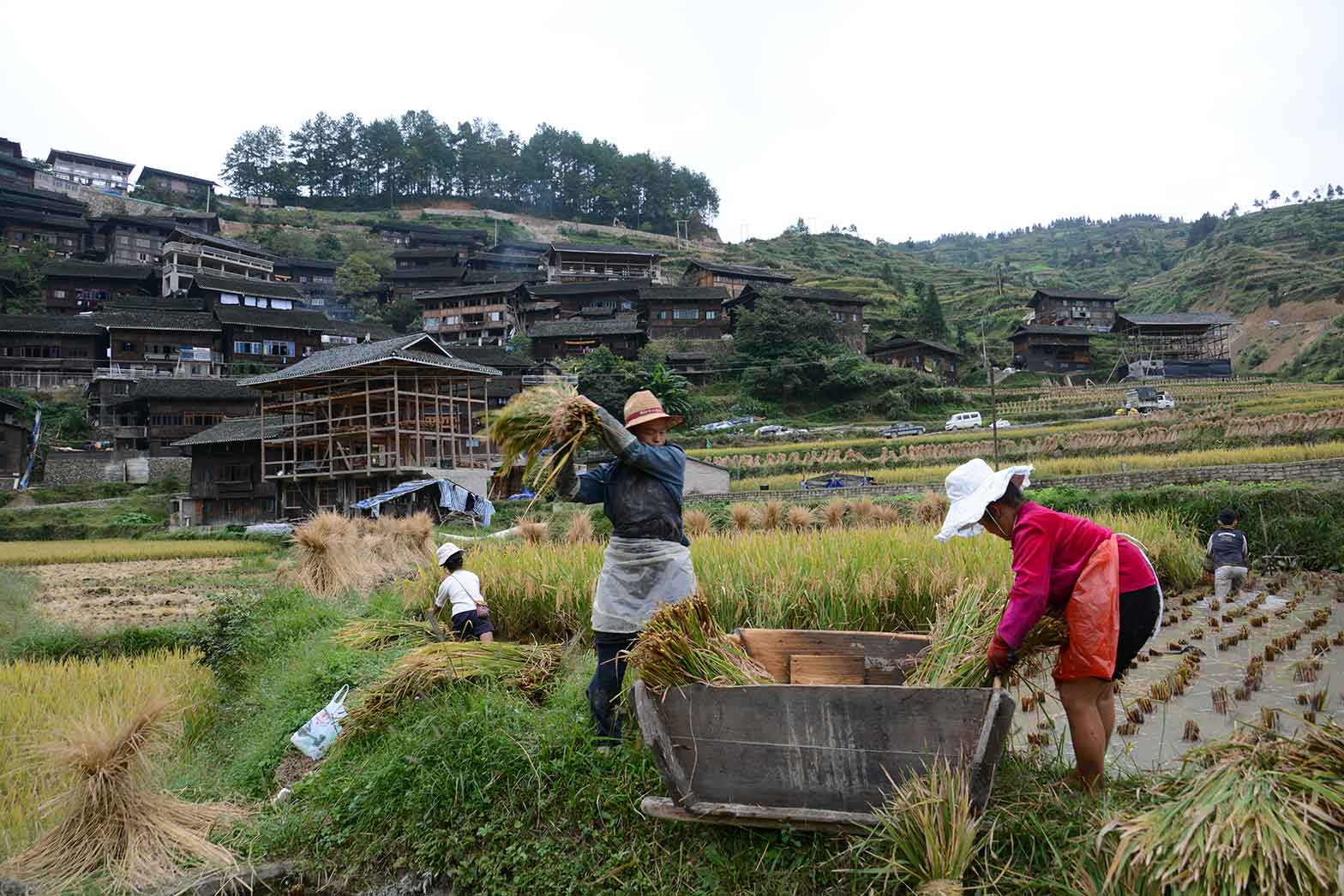 Local farmers in China