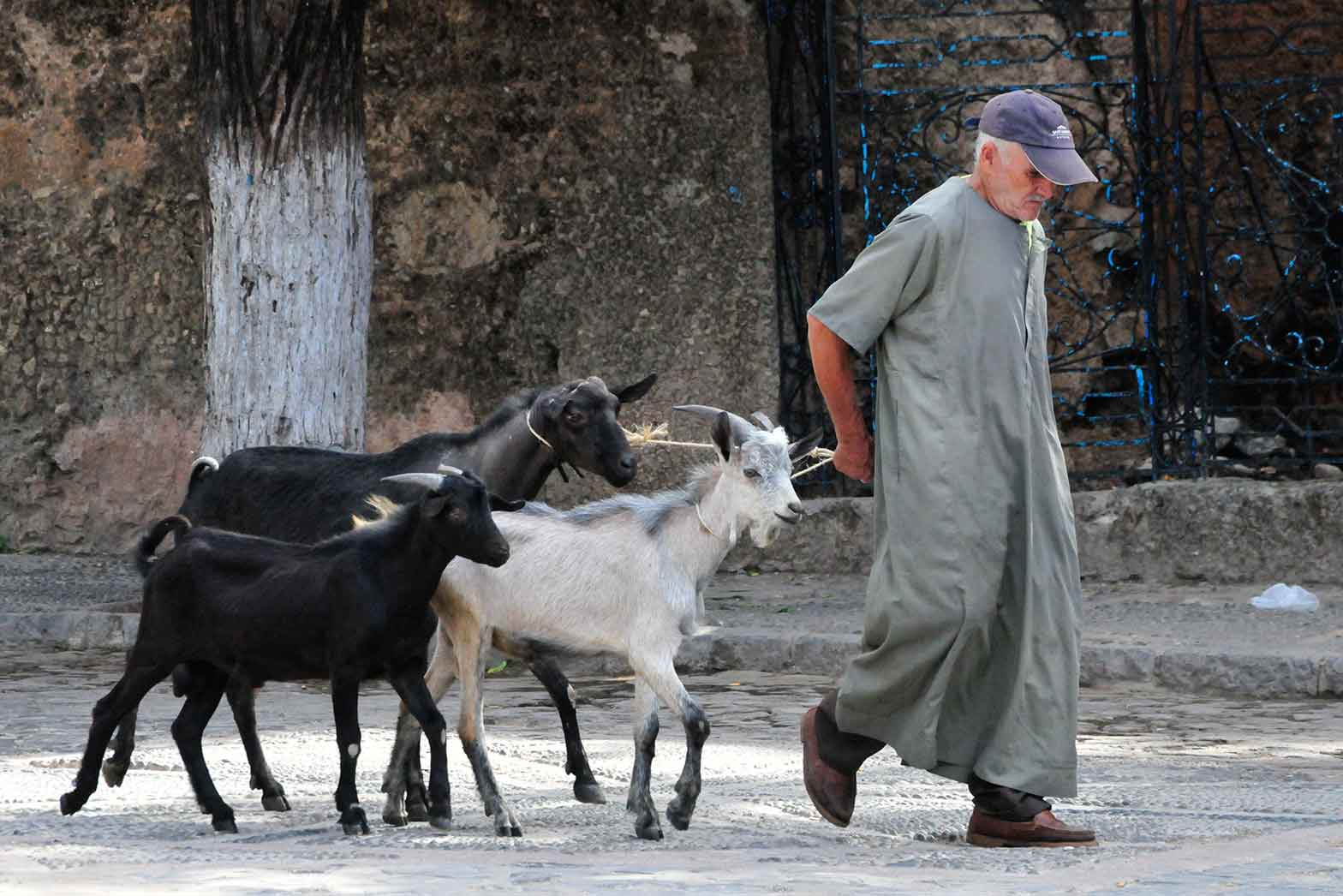 A man with goats