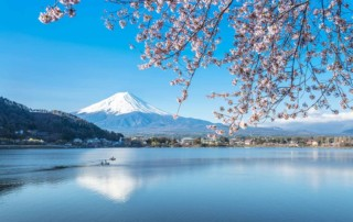 Mount Fuji, Japan Cherry Blossoms Motorcycle Tour in Japan