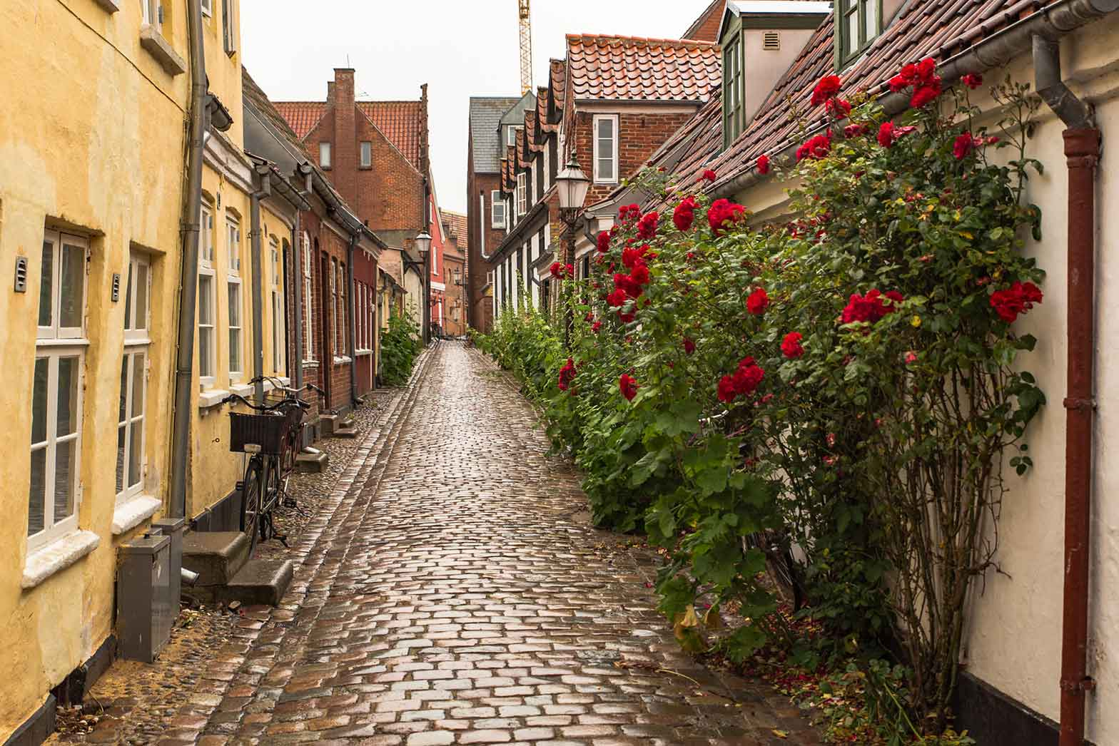A narrow cobblestone street in Bruges, Belgium