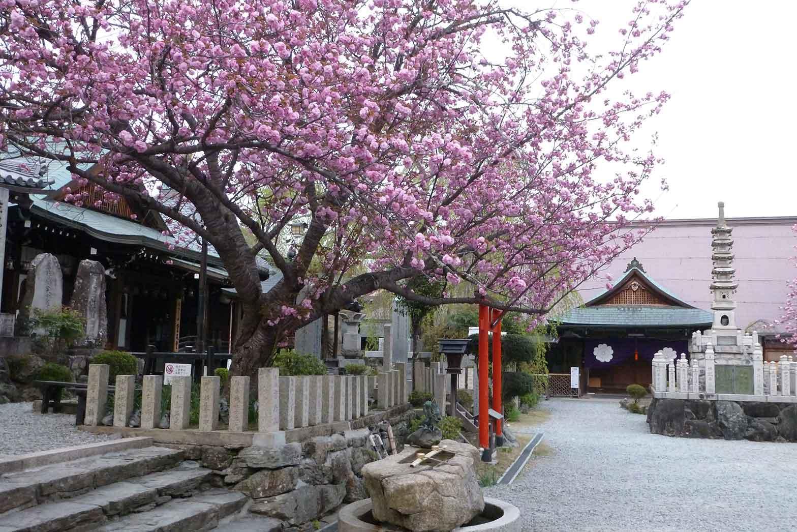 Shrine in Yoshino