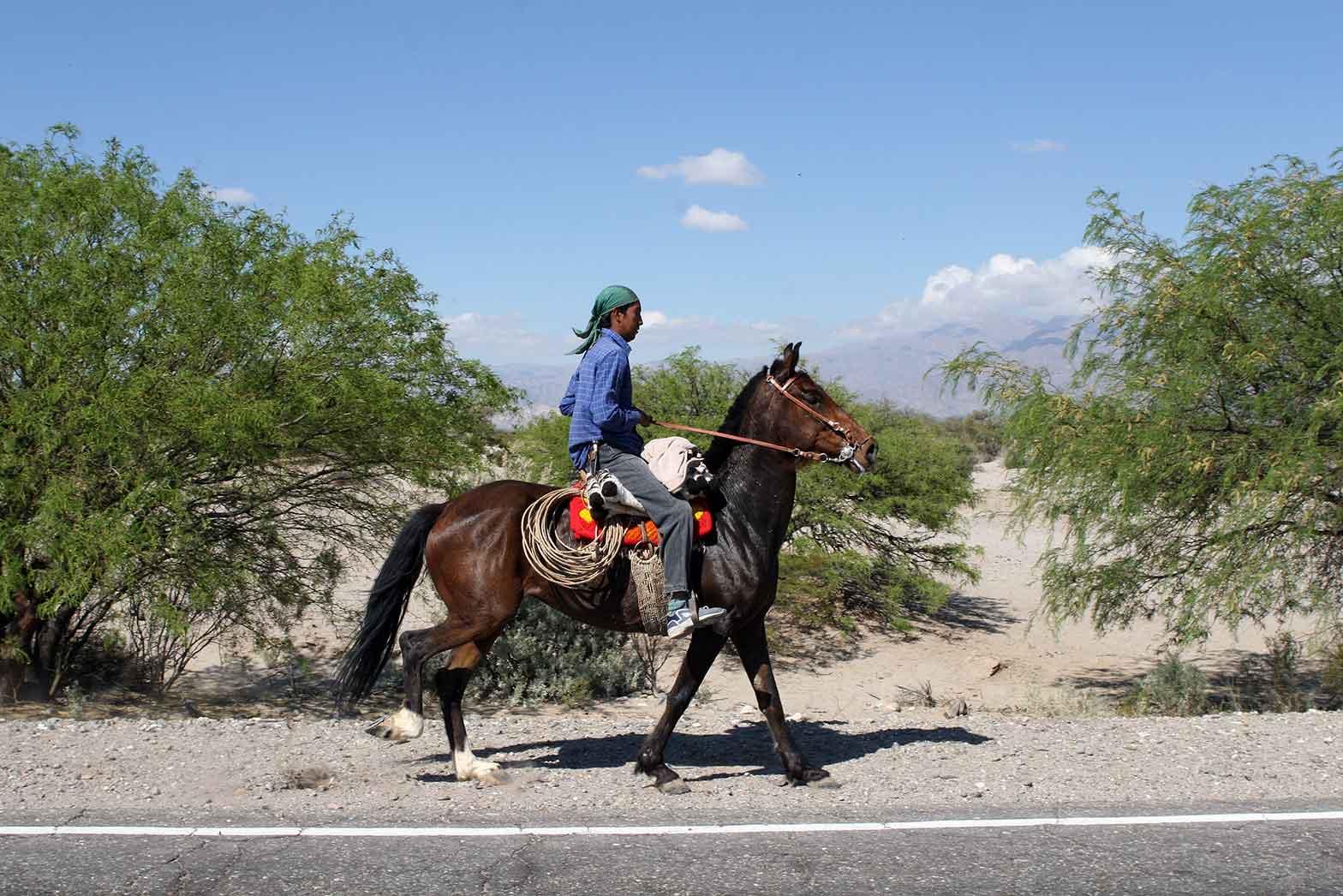South American Horseman