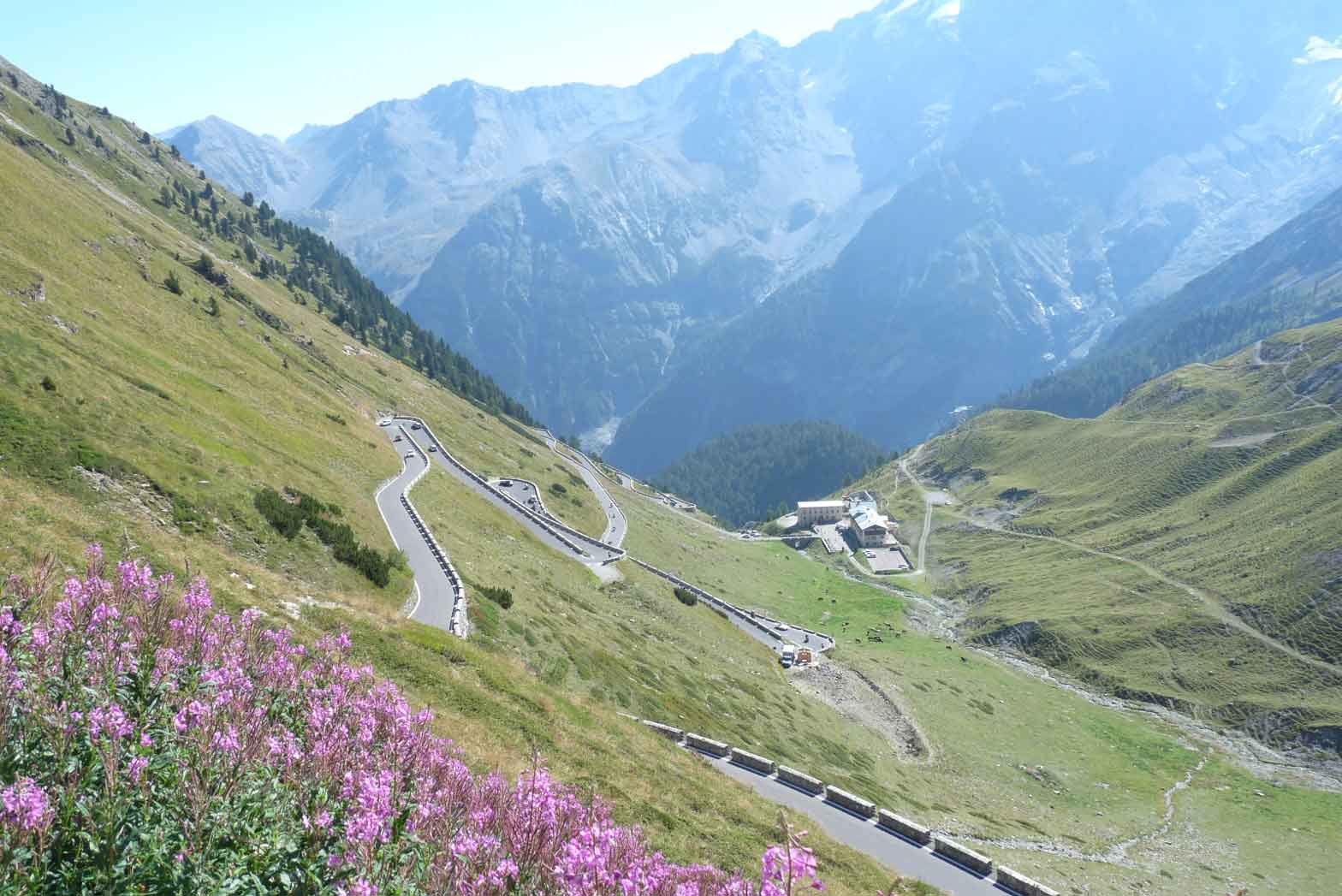 The Stelvio Pass panorama