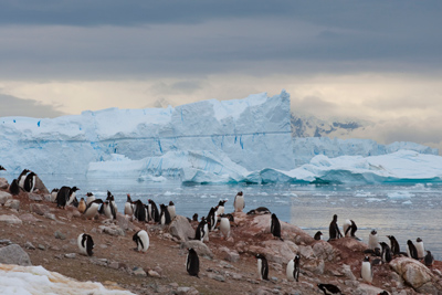 Antarctica Adventure, Motorcycle Tour in South America, Day 14