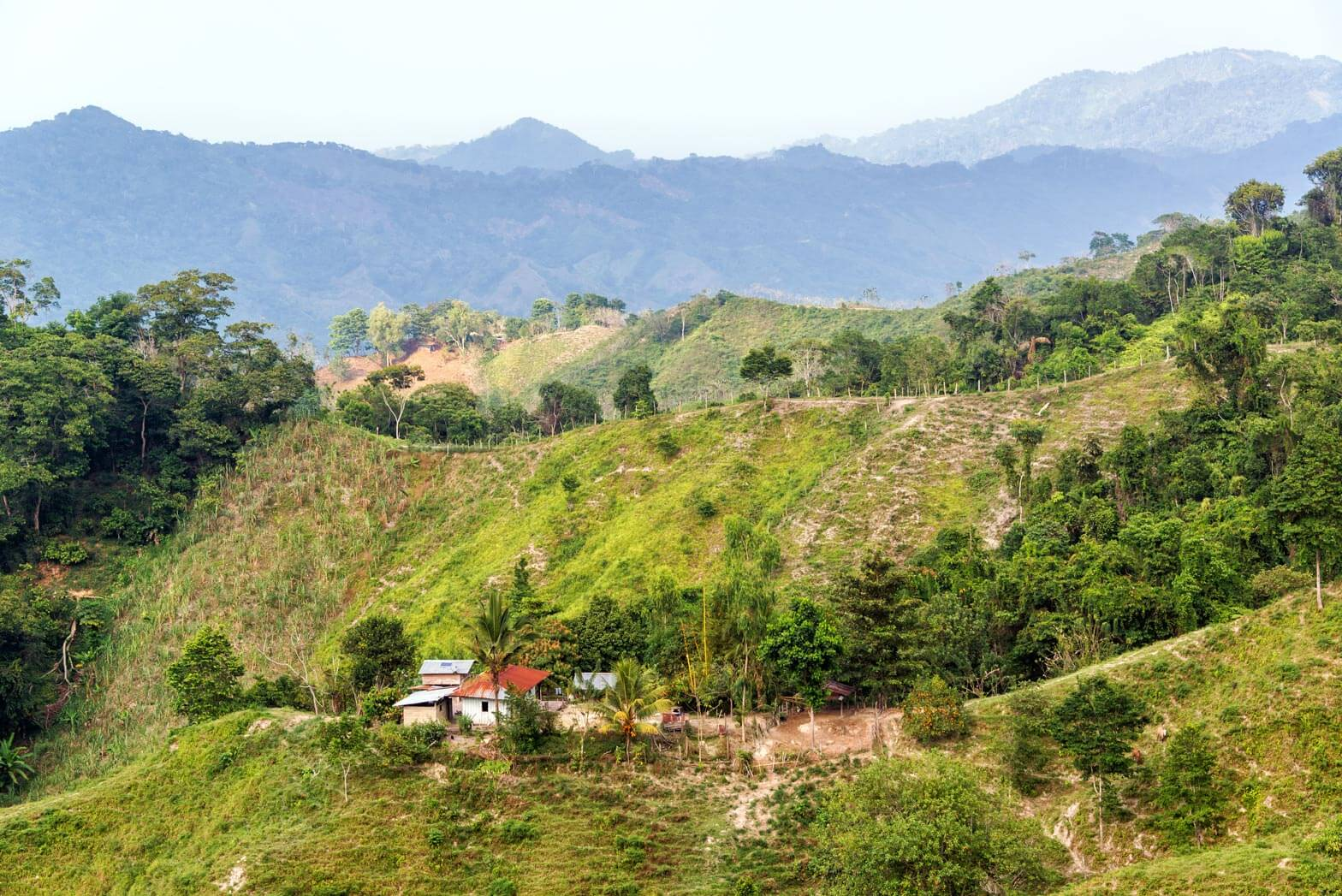 Green hills in Colombia