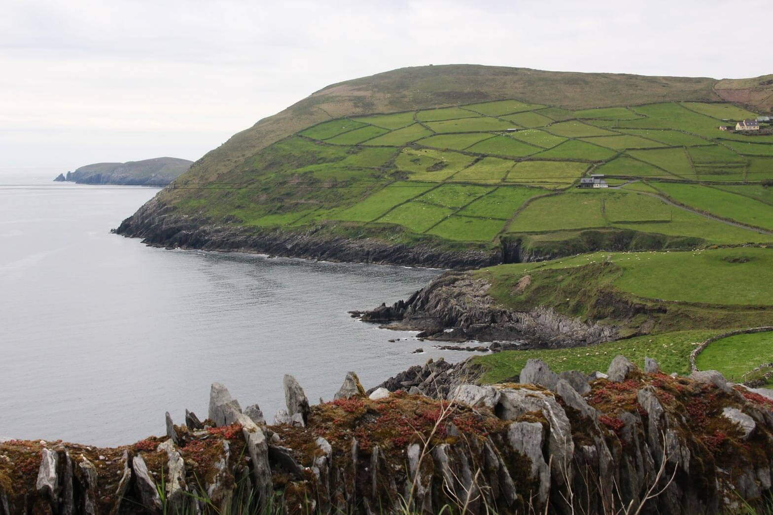 Ireland-Motorcycle-Adventure-3