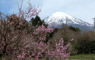 Day 11 of Japan Cherry Blossoms Motorcycle Tour in Japan, Ayres Adventures, Mt. Fuji