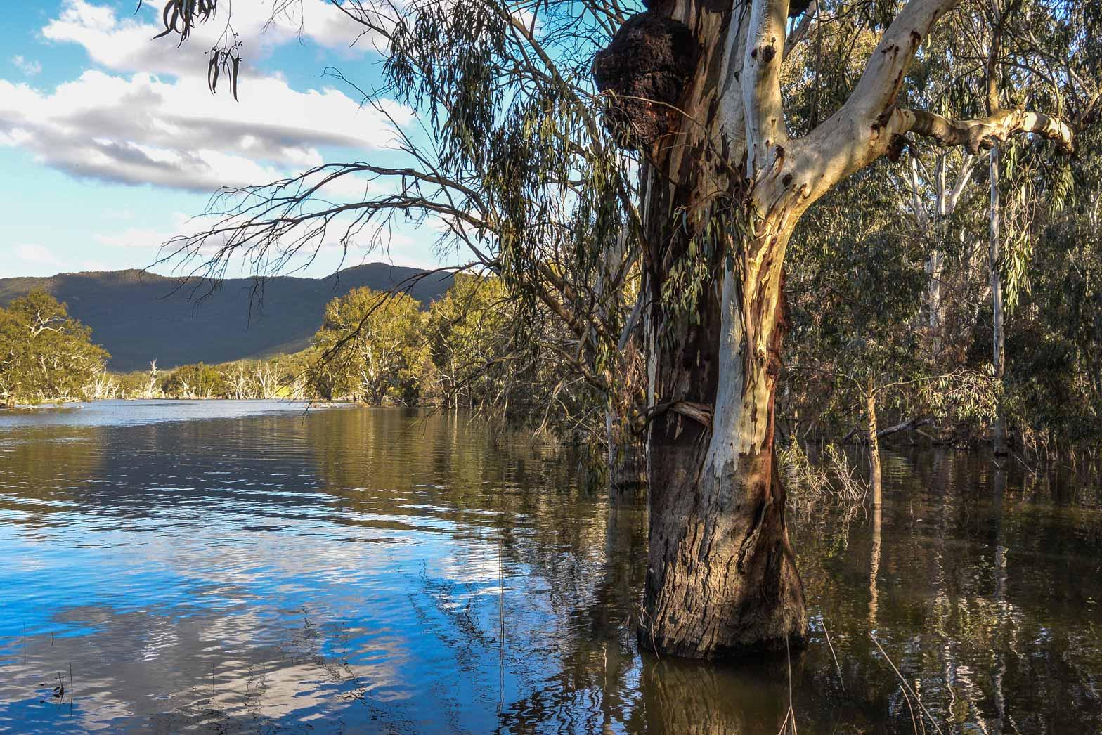 Australia-and-Tasmania-Slider12