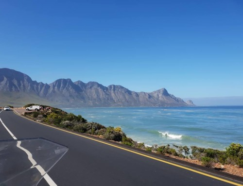 Day 2 – Cape Town to Cape L'Agulhas