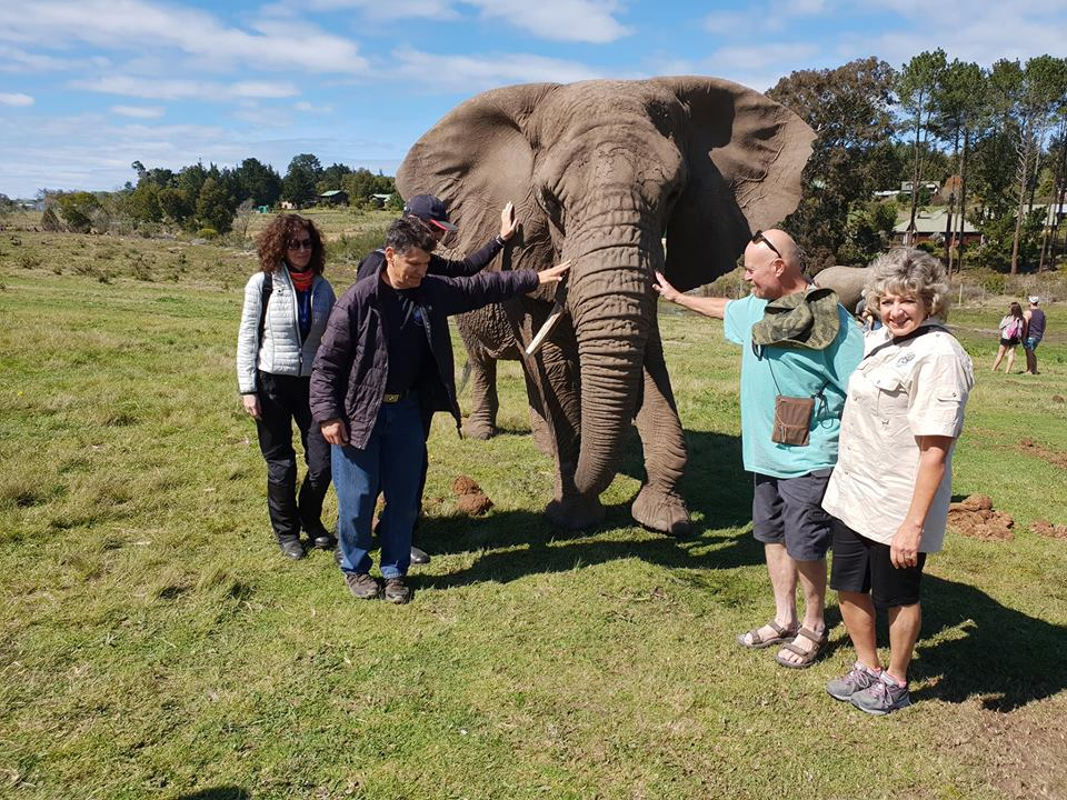 Motorcycle Tour in Africa 2018 by Ayres Adventures, Day 5 - Free day in Knysna
