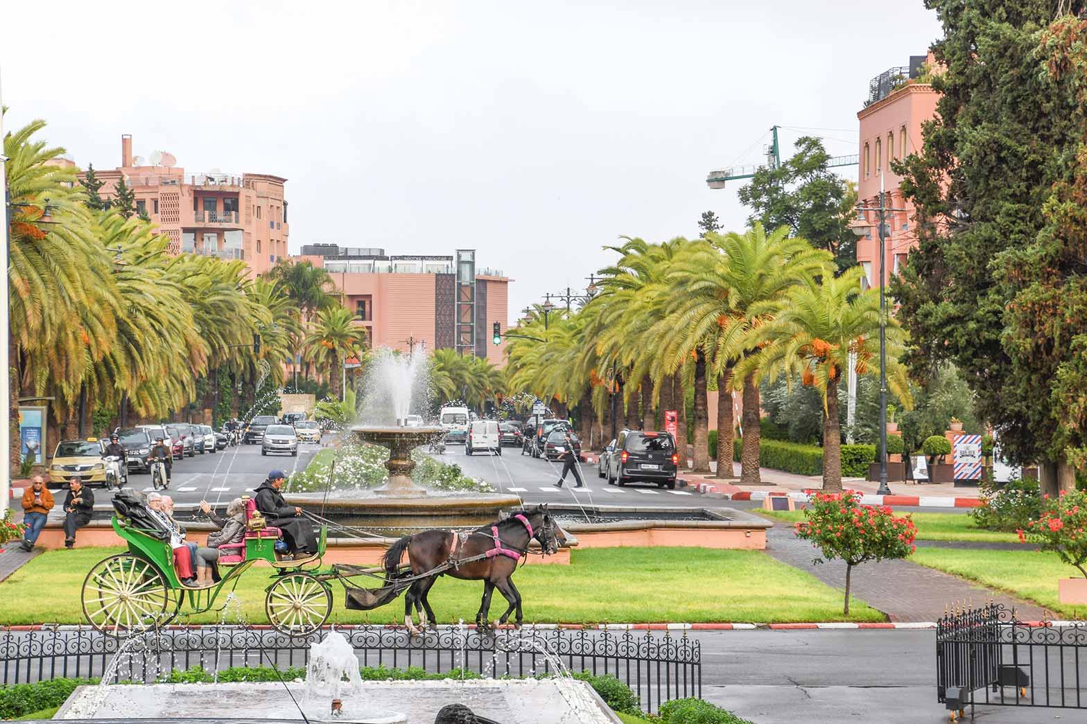 Local horse power, Marrakesh