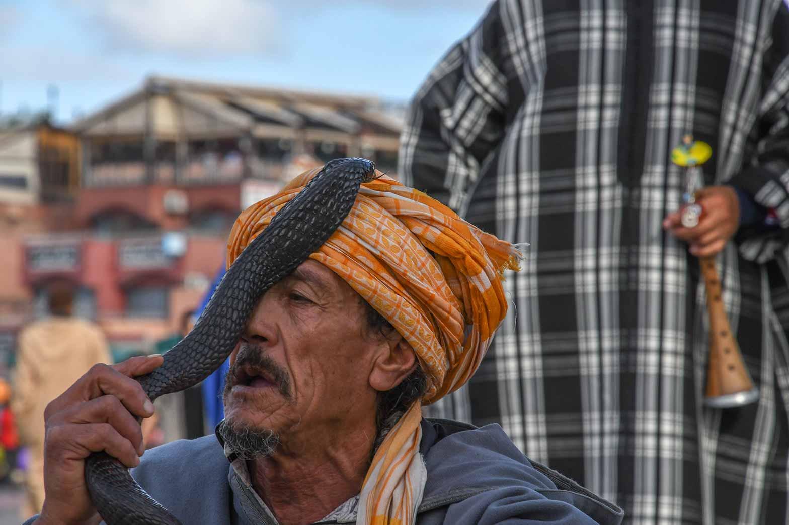 Snake handler, Marrakesh