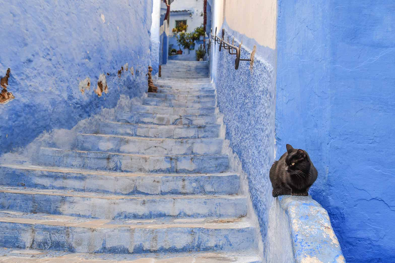 Stairs in Chefchaouen