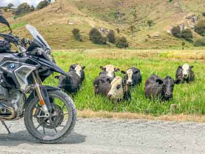 New Zealand Off-Road Motorcycle Tour, Day 1